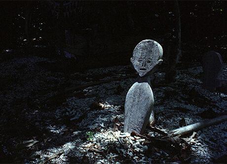 Faszination Friedhof